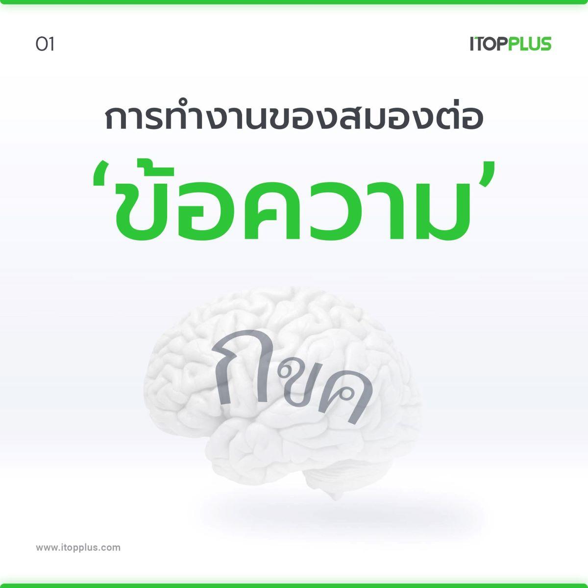 สมองชอบ