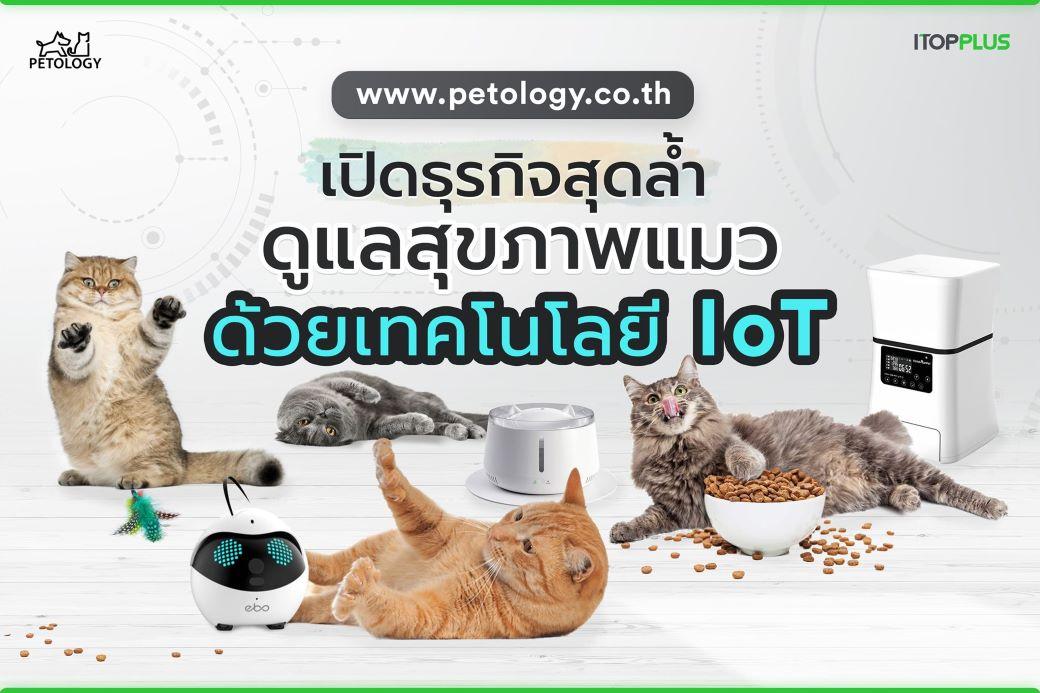 เปิดธุรกิจสุดล้ำ ดูแลสุขภาพแมว ด้วยเทคโนโลยี Iot